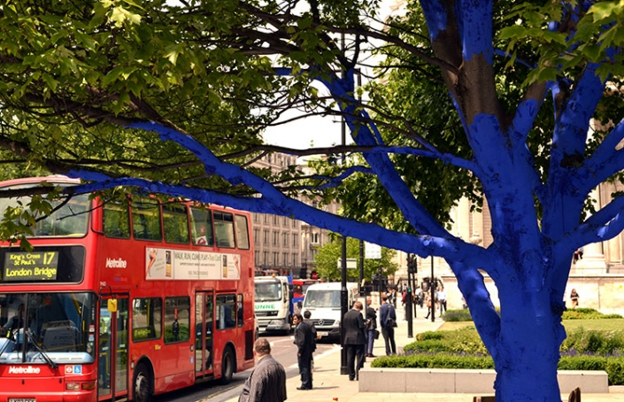 Green City, Blue Trees